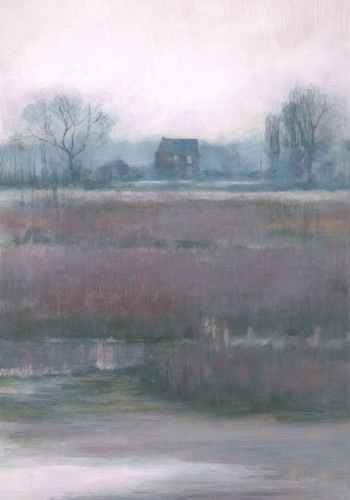 Wetlands house in mist: