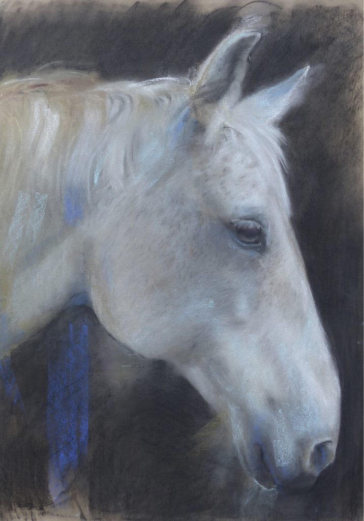 White Horse Head: